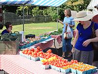 Collegville Farm Market