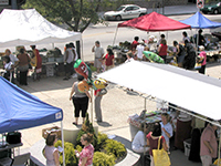 Norristown Farm Market