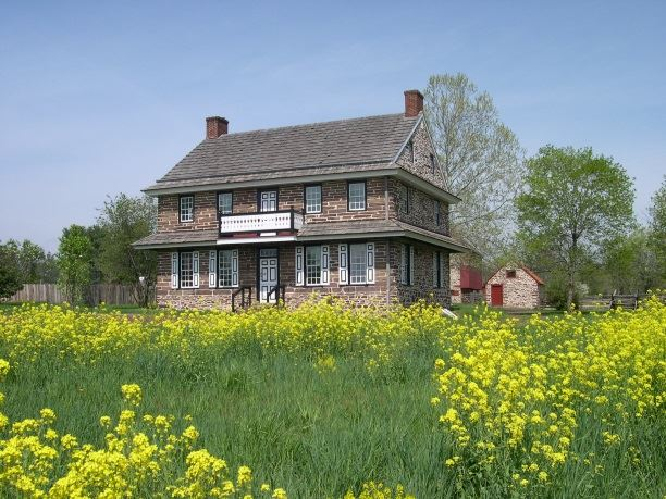 House in April- wild mustard