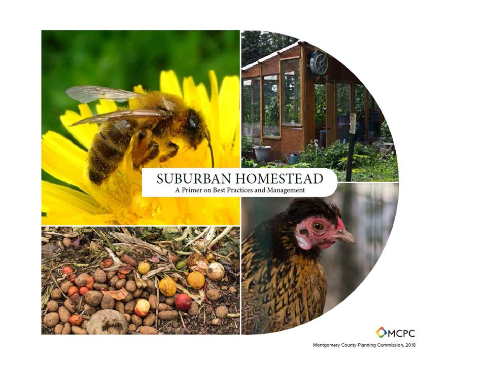 Suburban Homestead Guidebook Cover