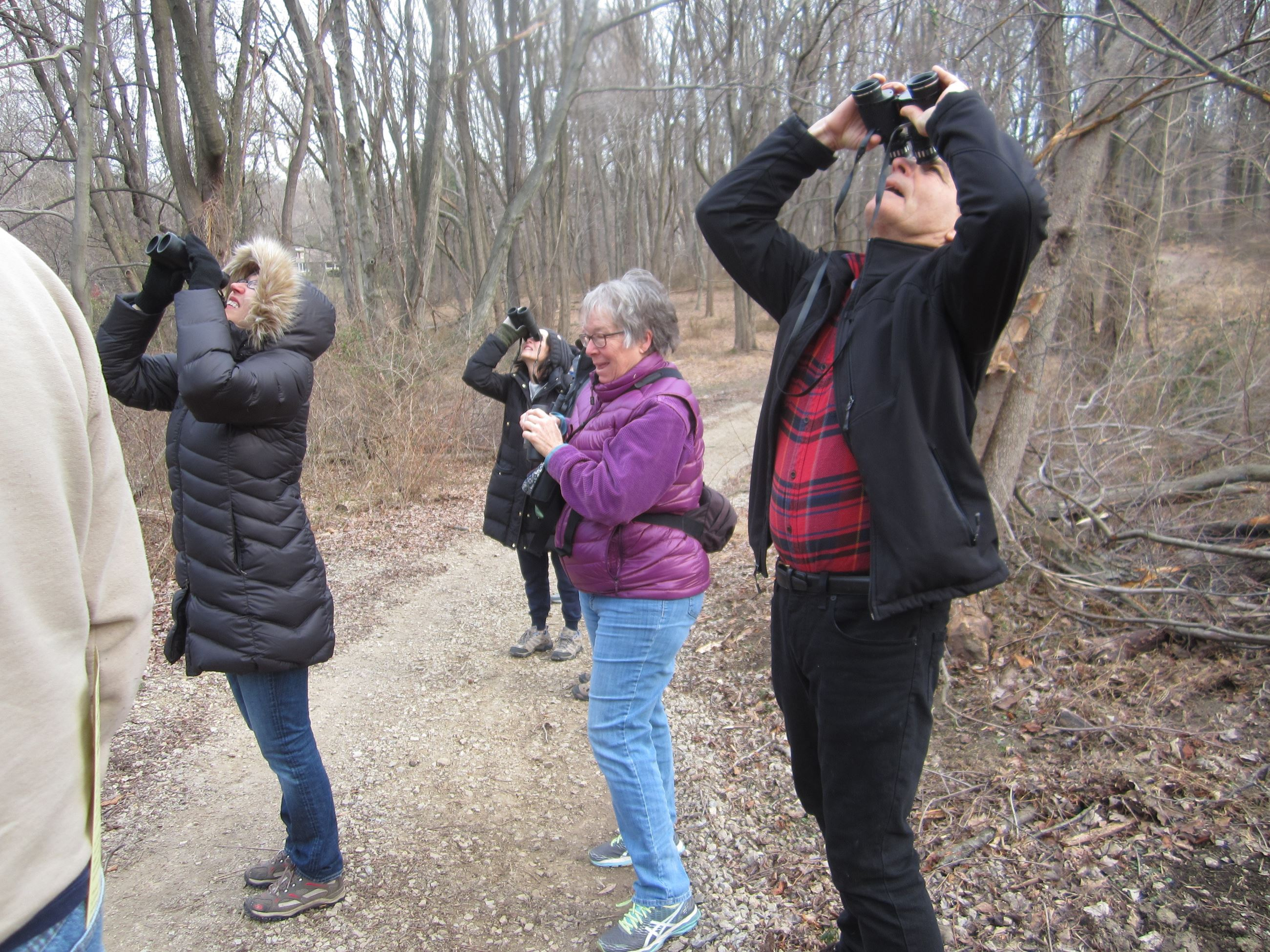 Bird Watching on the Pennypack Trail