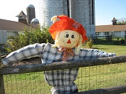 Scarecrow Making at Norristown Farm Park.jpg