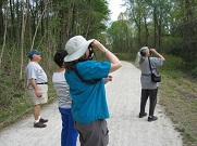 Songbird Migration Walk at Lorimer Park.jpg